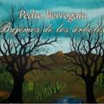 Pedro Berrogain